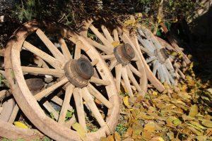 HolzWagenraderSpeichenrader 300x200 - Alte historische Wagenräder (Holzspeichenräder) günstig zu verkaufen