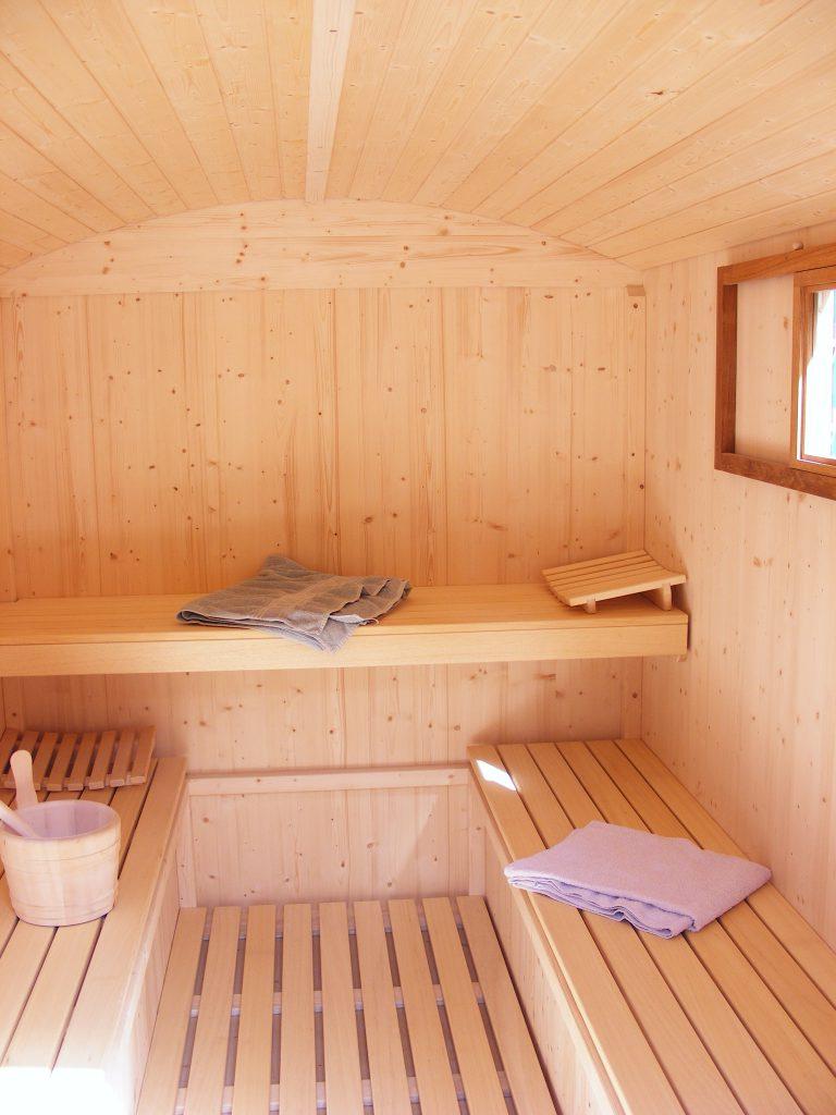 DSCF4226 768x1024 - Saunawagen